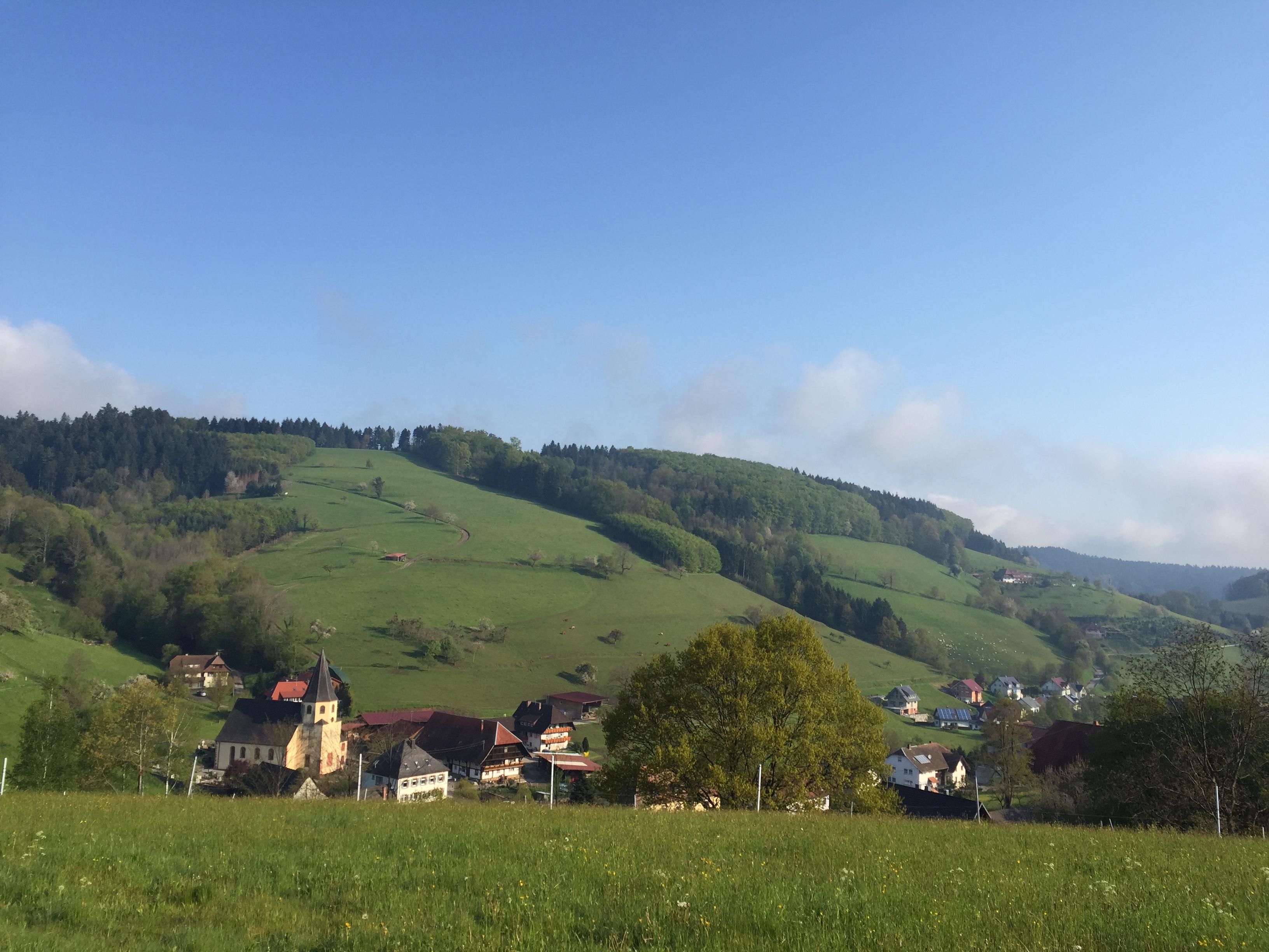 Aussicht in die Dorfmitte Prinzbach
