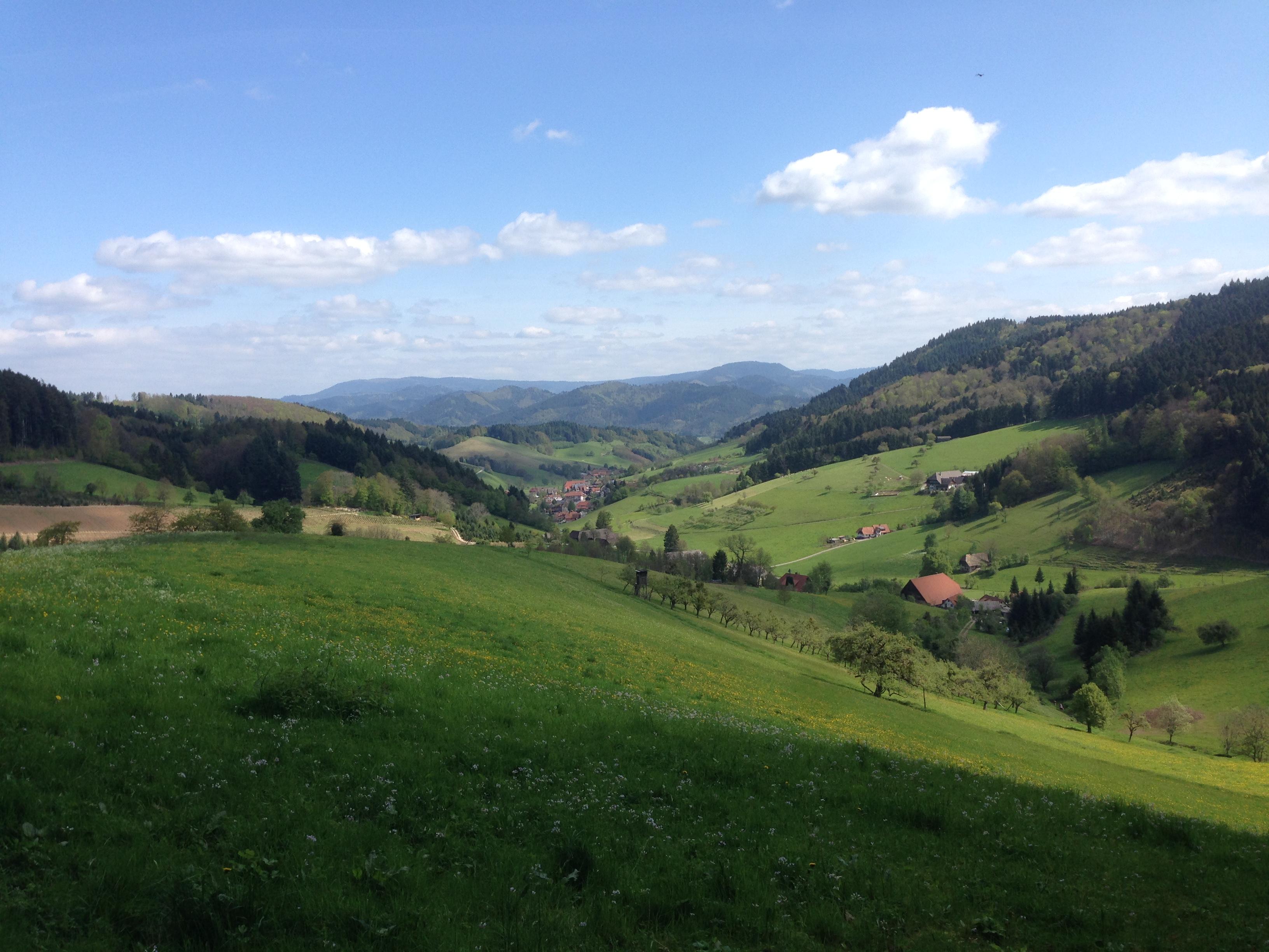 Blick ins idyllische Prinzbachtal