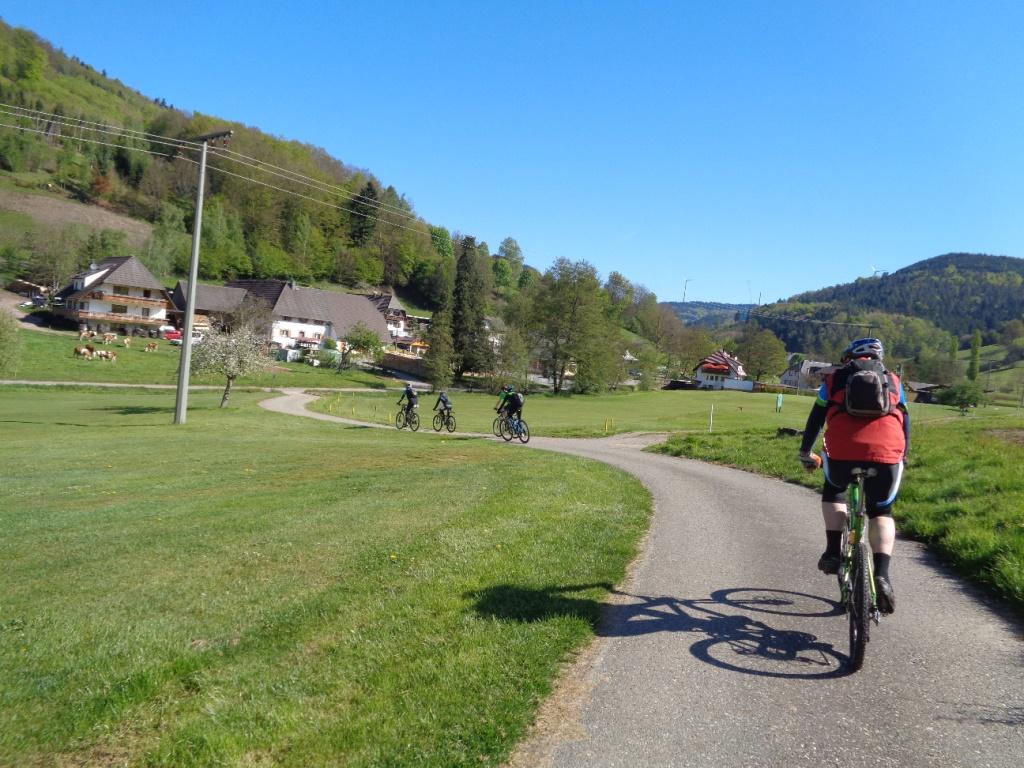 Mountainbike singletrails schwarzwald