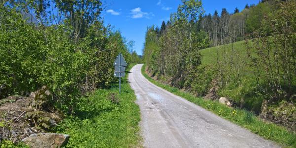 Von Diessenbach Richtung Gotteszell