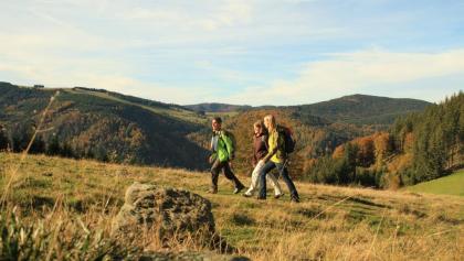 Wandern am Hinterwaldkopf