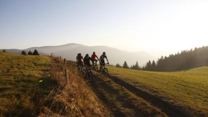In der Abendsonne über die Hügel des Schwarzwalds