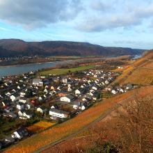 Herrliche Rheinblicke von der Edmundhütte