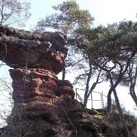 Schwalbenfelsen bei Dahn