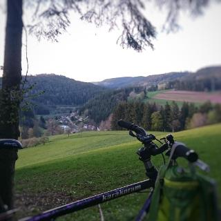 Blick vom Waldausgang Spaltberg auf Bettenhausen. Blick ins Glattal
