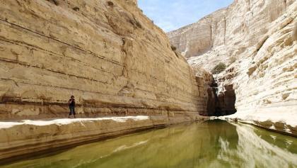 Wasserbecken mit Wasserfall
