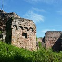Ruine Frankenstein , 16. Mai 2017 11:30:28