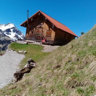 Mittlere Hasenegg Alpe 1592 M