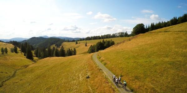 Mountainbiker am Gisiboden