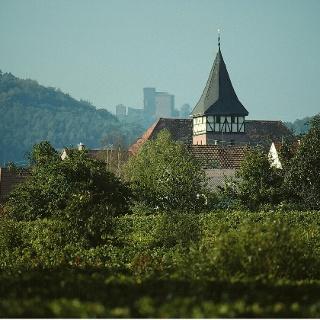 Blick auf Ranschbach
