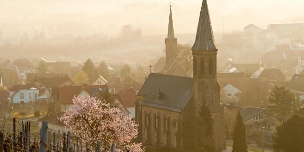 Birkweiler im Frühling