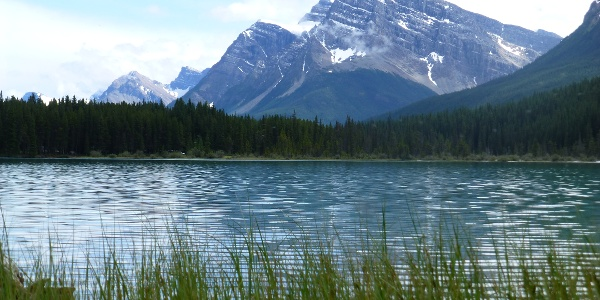 One of the Waterfowl lakes
