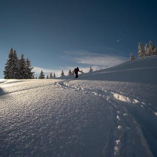 Aufstieg im lichten Hochwald bei Neuschnee.