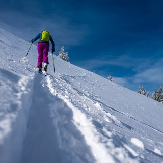 Erst oberhalb der Baumgrenze warten am Schafreuter offene Skihänge.