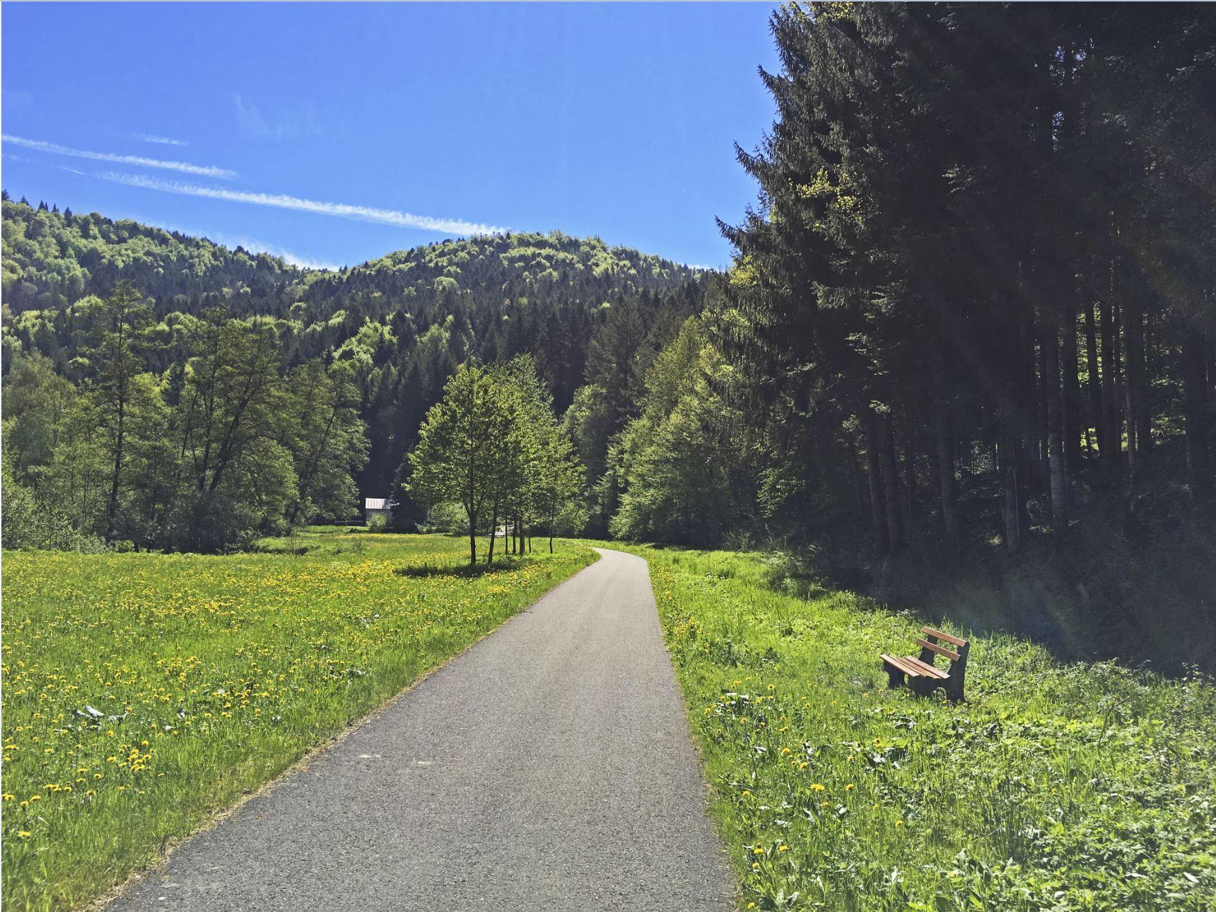 Entlang der Nagold nach Wildberg