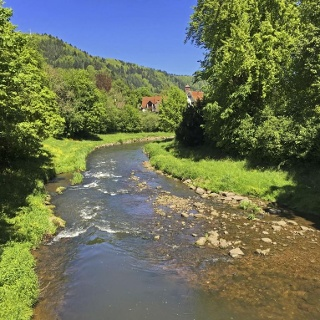 Fluss Nagold in Calw
