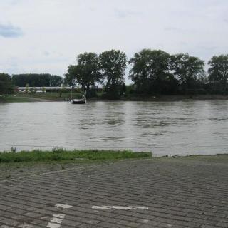 Rheinfähre zur Kollerinsel