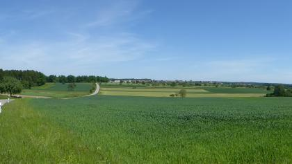 Panoramablick zwischen Neuhausen und Hamberg