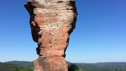 Backenzahn der Burgruine Drachenfels.