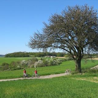 Radfahrer bei Widdern