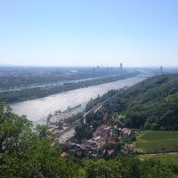 Blick vom Nasenweg auf das Kahlenbergerdorf