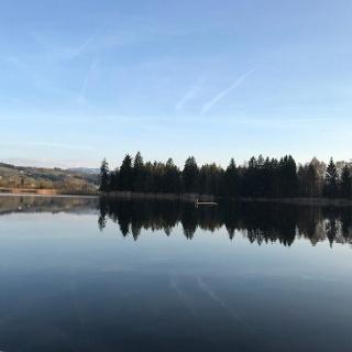 Blick auf den Sulzberger See