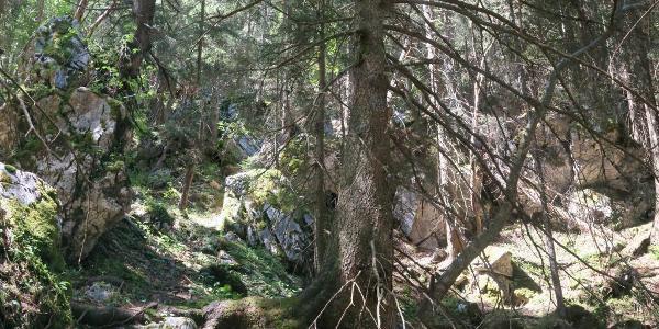 Abstieg durch das Arzbachtal