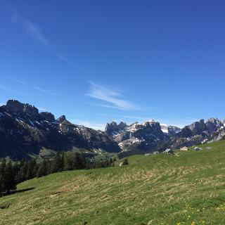 Weg Richtung Alp Sigel