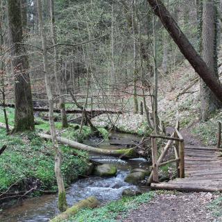 Bohlenwege und Brücken im Tal des Sophienfließ