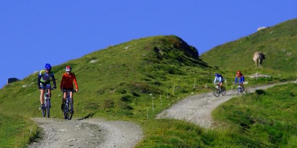 Mountainbiking in Wallis