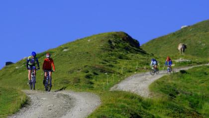 Biking on the sunny slopes of the Rhone Valley