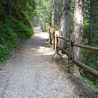 On the hiking trail to Binn