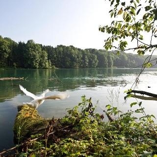 Rhein Bad Zurzach