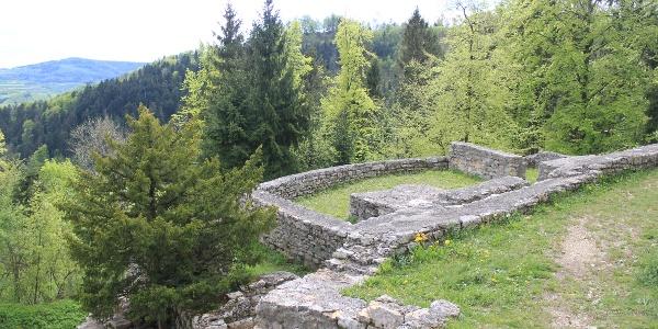 Ruine Tiersteinberg