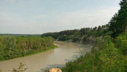 Blick Richtung Ebing vom Trail am Innufer
