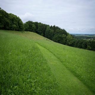 Kurzes Grasstück direkt oberhalb der Seiseralm