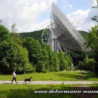 Am Radioteleskop