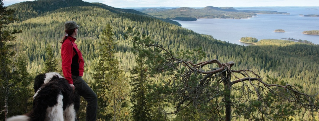 The magnificent landscape of Koli is known as the national landscape of Finland