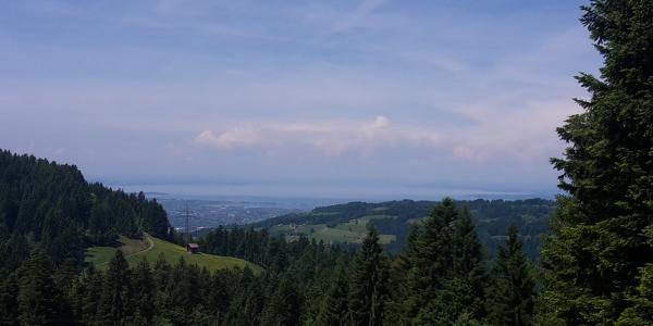 Blick auf den Bodensee kurz vor der Berchtoldshöhe