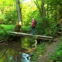 Im wildromantischen Pommerbachtal