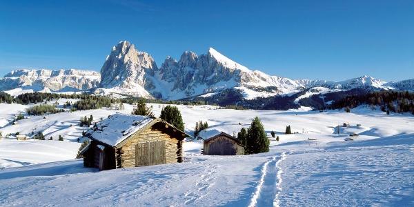 Paesaggio invernale dell'Alpe di Siusi