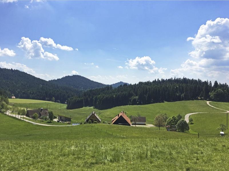 Oberwolfach Tour 8 - Über die Höhen des Wolftals