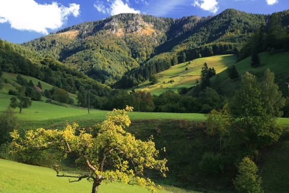 Belchen-Kleeblatt Tour 4