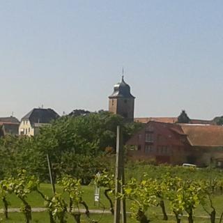 Dackenheim