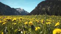 Frühjahrswandern im Tannheimer Tal © Ferienregion Tannheimer Tal
