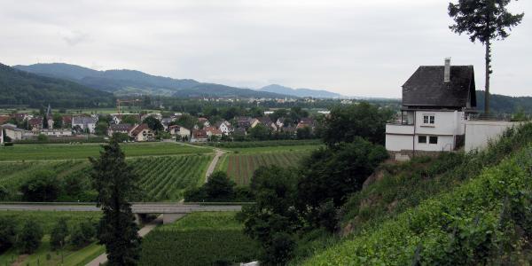 Rebberg Jägerhäusle, Blick über Buchholz zum Rosskopf und Schönberg