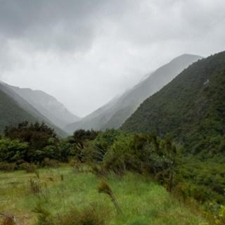 Kowhai Valley