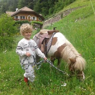 Kinder am Ponyhof Holen-Aldein