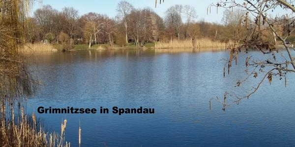 Der Grimnitzsee in Berlin