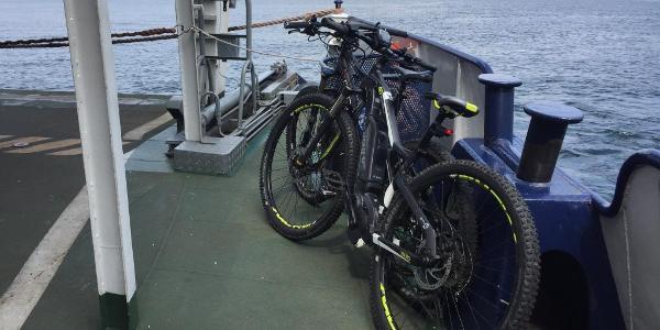 .... unsere bikes